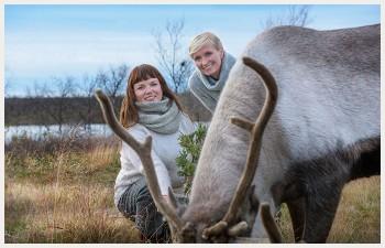 Gry og Ellen står bak en rein som gresser i naturlige omgivelser